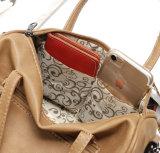 Sacchetto causale di Boston del Tote delle signore delle borse delle donne di modo (WDL0973)