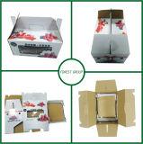 Zweiteiliger gewölbter Karton-Kasten für das Frucht-Verpacken