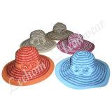 Chapeau de position de paille de chapeau feutré d'été de mode (LB14029)