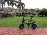 12 بوصة طيّ مصغّرة دراجة كهربائيّة