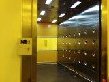 Space-Saving, rapide porte ouverte, grande douche avec portes de l'obturateur de l'air, convenable pour les chariots élévateurs