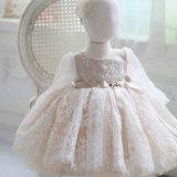 Robe nuptiale de longue de chemise de lacet de fleur robe de fille
