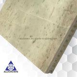 Comitati leggeri di memoria di favo della pietra del marmo della natura per le decorazioni della costruzione