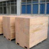 Segurança pública de sistemas de filtragem de raios X 100100 size