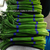 Les Chinois de haute qualité vis à l'ail de légumes frais