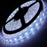 Una buena calidad 5V/12V/24V/220V Warm-White/Blanco Ra80 Cambio de color 5050 TIRA DE LEDS