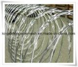 Rete metallica galvanizzata tuffata calda del rasoio