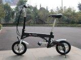 전기 자전거 (TDU12002Z)