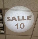 Zeichen-Firmenzeichen-Projektor im weißen Farben-Licht des Mall-20W