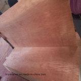 Madera contrachapada de la madera dura de la alta calidad del grado E0 para los muebles