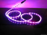 RGB LEIDENE Waterdichte Lichte LEIDEN SMD van de Strook Licht