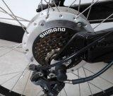 """Bicicletta elettrica della montagna dell'uomo del Dutch 26 """" con En15194 approvazione (JB-TDE05Z)"""
