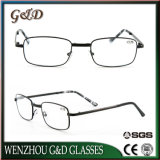 Case를 가진 새로운 Design High Quality Metal Foldaway Reading Glasses