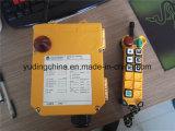 Grúa sin hilos 12V teledirigido F24-6D Telecrane de radio industrial Contol alejado F24-6D