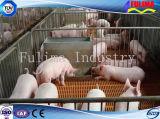 Estructura prefabricada de acero ligero cerdo Casa de la Ganadería (SSO-H-008)