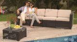 Jogos ao ar livre do sofá, mobília do Rattan do pátio, jogos do sofá do jardim (SF-323)