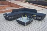 Напольные комплекты софы, мебель ротанга патио, комплекты софы сада (SF-310)