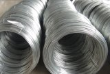 Веревочка стального провода, провод оцинкованной стали/гальванизированный стальной провод для горячего сбывания!