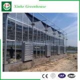 야채를 위한 농업 유리제 온실 또는 꽃 또는 정원