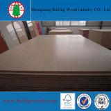 Grãos de madeira a melamina Falcata Core Blockboard para mobiliário