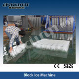 Focusun brachte Eis-Pflanze des Block-25tpd voran
