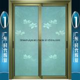 De Professionele Fabrikant van China Foshan (Bruce Lee Kongfu) van de Deur van het Aluminium