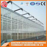 Serre chaude commerciale de feuille de polycarbonate de structure métallique d'agriculture pour le légume