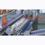 Linear-Pet estiramento sopradoras de Máquinas (DMK-L8)