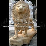 Leone dell'oro del deserto per la decorazione domestica Ma-223