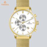 Nieuw Horloge 72375 van het Embleem van de Douane van de Steelband van de Mensen van de Luxe van het Polshorloge