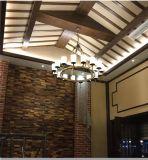 Lampe pendante de type de sarclage rond américain de fer