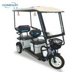 乗客のための3車輪60V800Wのオートバイのトラックの貨物電気三輪車