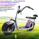 2017高品質のセリウムが付いている小型電気移動性のスクーター