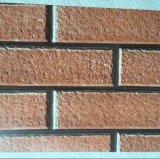 Vooraf geverft Materiaal PPGI met het Af:drukken van de Baksteen