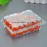Rectángulo disponible del empaquetado plástico del rectángulo transparente de la fruta del rectángulo plástico del animal doméstico