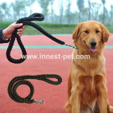 De in het groot Leibanden van de Kraag en van de Leiband van /Dog van de Leiband van de Hond/van het Huisdier