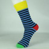 Носки платья горячей новой конструкции счастливые продают оптом носки оптом платья