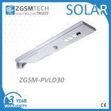 Réverbère solaire de détecteur d'IP65 PIR 30W pour le pays et le village