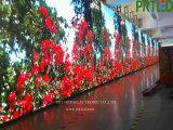 Bon mur visuel polychrome imperméable à l'eau de la location DEL avec l'espacement des pixels 6.25, P 4.81