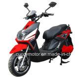 """Bike 1000W 1500W 2000W новый Aguila Unico Кубы Панамы Бразилии электрический с """" большая тучная автошина 12"""