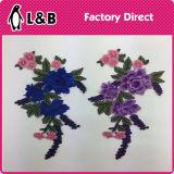 Il ricamo popolare di nuovo disegno cuce on/Iron sulla zona del fiore