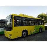 35-39 de Bus van zetels met Dieselmotor