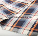 Garn gefärbtes 40s Baumwollgewebe für Hemd