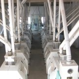 Projeto Turnkey Planta fresadora de Milho
