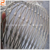 Animals Protection를 위한 304 스테인리스 Steel Wire Rope Zoo Mesh