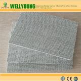 Panneau alternatif de la colle de couleur de panneau extérieur gris de MgO