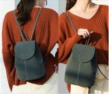 Sacchetto di cuoio delle donne dell'unità di elaborazione del progettista del sacchetto delle signore di modo della fabbrica di Guangzhou