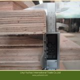 28mm noyau de contreplaqué de feuillus tropicaux Keruing pour récipient de revêtements de sol