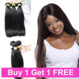 Virginal brasileña del pelo de un donante venta al por mayor del pelo humano