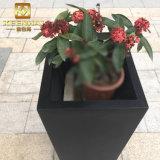Im FreienEdelstahl-Pflanzer-Kasten-Quadrat-Blumen-Potenziometer